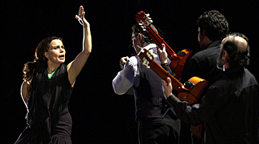 Photo of Noche Flamenca troupe