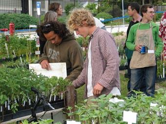 Photo of Farm plant sale