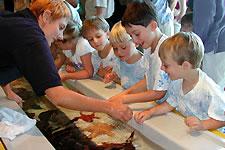 Photo: Seymour Center activities
