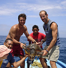 Group with sea turtle