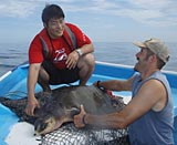 photo of fishermen with sea turtle